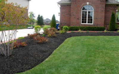 The Homeowner's Ultimate Guide to Mulch