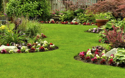 Spring Landscape Maintenance Tips for Homeowners