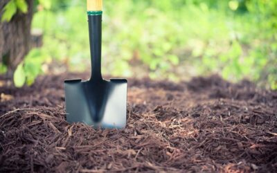 Include Fall Mulching on Your Task List to Keep Your Gardens Beautiful in the Spring
