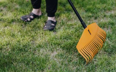Proper Raking Key to Fall Lawn Care