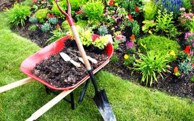 4 Tips for Spring Mulching